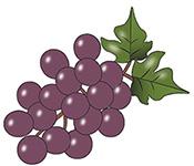 grapes-666113_960_720